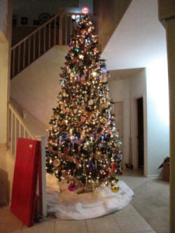 Our 12-foot Christmas Tree