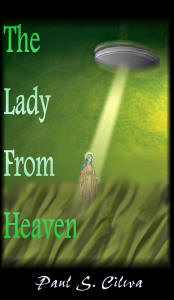 The Lady From Heaven book cover